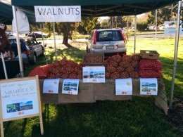 Harcourt Valley Walnuts